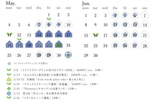 5〜6月修正